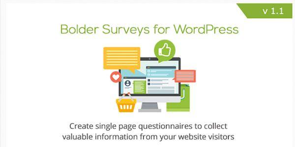 bolder-surveys